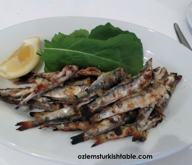 Fried anchovies, hamsi; so fresh and delicious