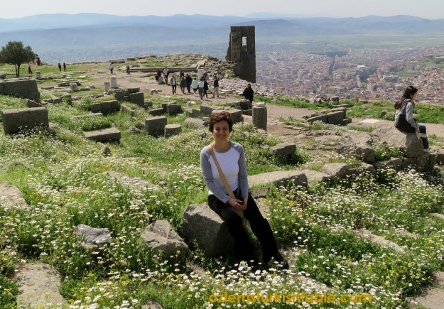 Surrounded by beautiful daisies in Pergamum