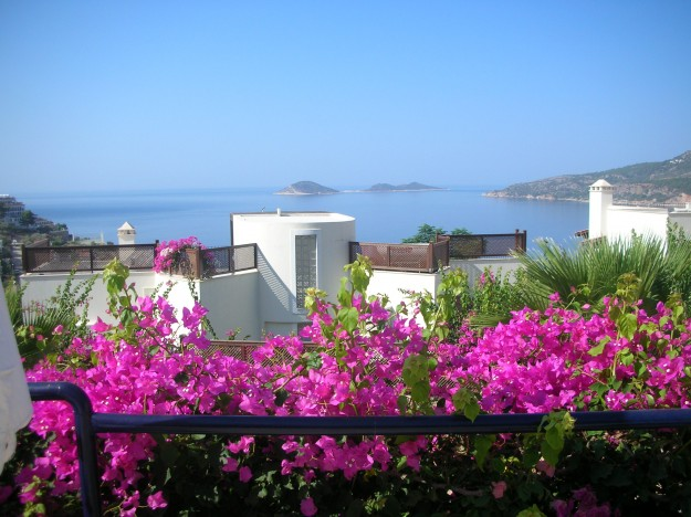 Lovely view and local plants from our friendly hotel, Ekinhan, Kalkan.