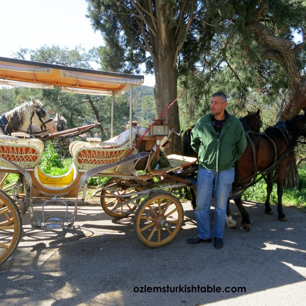 Horse Carriages, Fayton, at the Heybeli Island