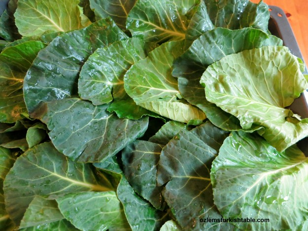 Large leafy greens like Swiss chard is ideal for stuffing, making sarma.