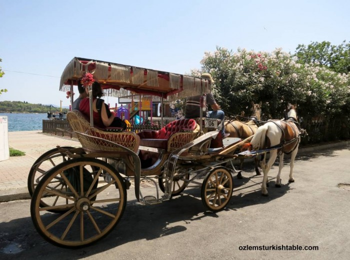 Charming horse carriages at Burgazada